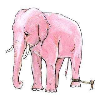 image from www.allthingshealing.com